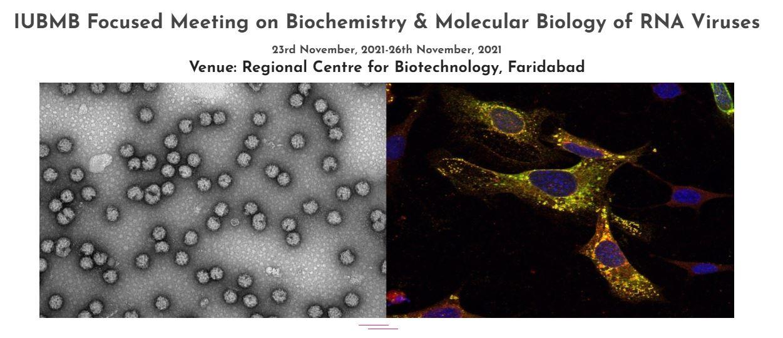 FM Biochem RNA Viruses